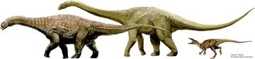 オーストラリアで新種の恐竜の化石発見